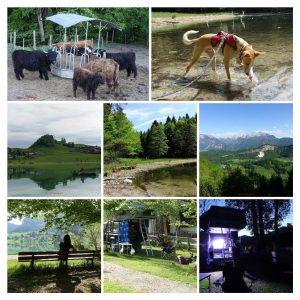 Thiersee | Austria