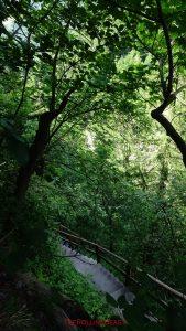 CH_Kunkelspass_Stairs to Natural Bridge