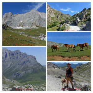 Picos de Europa - Collage